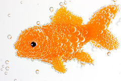 Goldfish underwater with bubbles Royalty Free Stock Photos