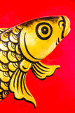 Goldfish zamknięty up obrazy royalty free