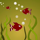 Goldfishes. Swimming in green water Royalty Free Stock Photo