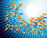 Goldfishes Royalty Free Stock Image