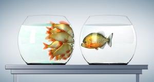 Goldfishes che esaminano piranha illustrazione vettoriale