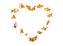 Goldfishes (Heart Shaped Frame Background) Stock Photography