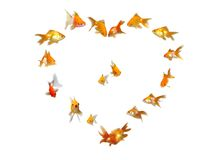 Goldfishes (Heart Shaped Frame Background) Royalty Free Stock Image