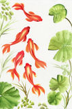 Goldfishes among the lotus leaves. Asian style original painting Stock Photo