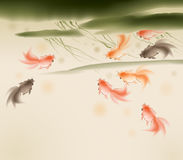 Goldfishes in lotus pond. A group of goldfish swimming in lotus pond, vectorized brush painting Stock Photography