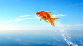Goldfishherausspringen des Wassers lizenzfreie stockfotos