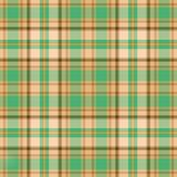 Goldgrünes Plaid Stockfotografie