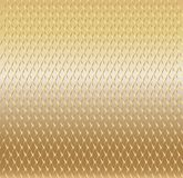 Goldhintergrund mit Masche lizenzfreie abbildung