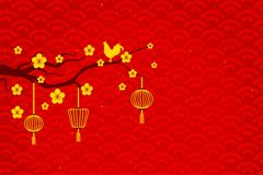 Goldhuhn auf Baumblume Lizenzfreie Stockfotos