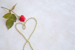 Goldinnere auf Rot Lizenzfreies Stockfoto
