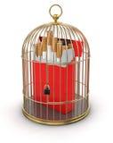 Goldkäfig mit Zigaretten-Satz (Beschneidungspfad eingeschlossen) Stock Abbildung