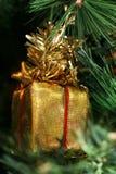 Goldkasten eines Geschenks Lizenzfreies Stockfoto