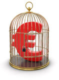 Goldkäfig mit Euro (Beschneidungspfad eingeschlossen) Lizenzfreies Stockbild