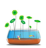 Goldlfish and  Gotu kola in fishbowl illustration Stock Images