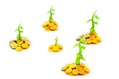 Goldmünzen und Anlage stock abbildung