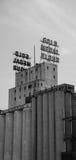 Goldmedaillen-Getreidemühle im Stadtzentrum gelegenes Minneapolis Lizenzfreie Stockbilder