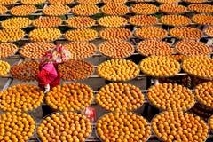 Goldpersimonen mit einem Arbeitslandwirt Lizenzfreies Stockbild