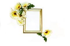 Goldrahmen mit den weißen und gelben Gänseblümchen stockfotografie
