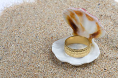 Goldring in einem Seashell Stockbild