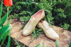 Goldschuhe, italienische Schuhe, Fotos annoncierend, Stockfotos
