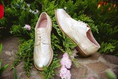 Goldschuhe, italienische Schuhe, Fotos annoncierend, Stockfotografie