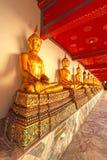Goldstatuen des Buddhas nebeneinander Lizenzfreies Stockbild