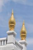 Goldtellersegment-scharfes im Freien Stockfoto
