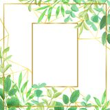 Goldtn Frame and Greenery. Geometric golden frame, herb, bushes branches with leaves in watercolor style. Greenery botanical template with text place for invite royalty free illustration