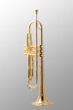 Goldtrompete stockfotos