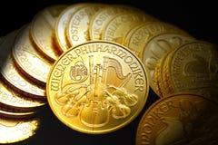 Goldunzen Stockfoto