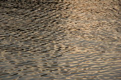 Goldwasser Lizenzfreies Stockfoto
