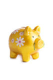 Goldy piggybank in flowers isolated. On white background Stock Images