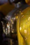 Golen Βούδας Στοκ εικόνα με δικαίωμα ελεύθερης χρήσης