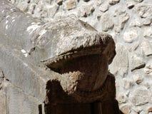 Goleto - serpente della scala fotografia stock