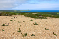 Golets 4. View from mountains to Bering sea Royalty Free Stock Photo