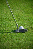 Golf. A stick of golf  and white golf ball on the green Royalty Free Stock Photo