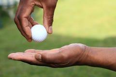 Golf 11 Stock Image