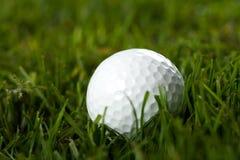 golf Royaltyfri Foto