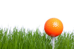Golf. Isolated Golfball on a white backgorund with some green Royalty Free Stock Photos