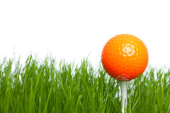 Golf. Ready for tee off - a golfball on tee isolated on a white background Stock Images