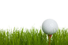 Golf. Ready for tee off - a golfball on tee isolated on a white background Royalty Free Stock Photos
