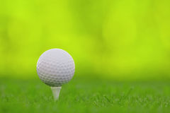 Golf. Ball on tee with selective depth of field Royalty Free Stock Image