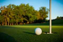 Golf. Close up of a golf ball on green grass Royalty Free Stock Photo