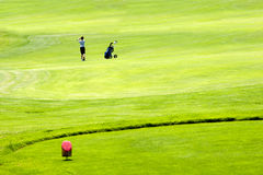 Golf. Er driving  ball in a green grass field Stock Photos