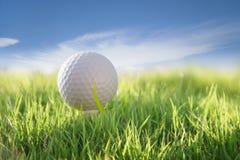 Golf Zdjęcia Royalty Free