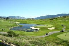 golf obrazy royalty free