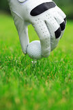 Golf. Detail of golf ball and gloves Stock Image