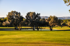 Golf Photos libres de droits