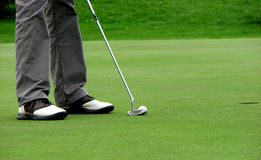 Golf. A man putting on the green Royalty Free Stock Image