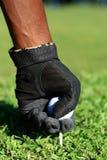Golf Stock Foto